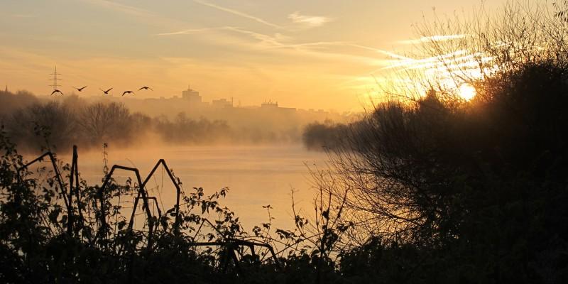 Morgendämmerung an der Ruhr