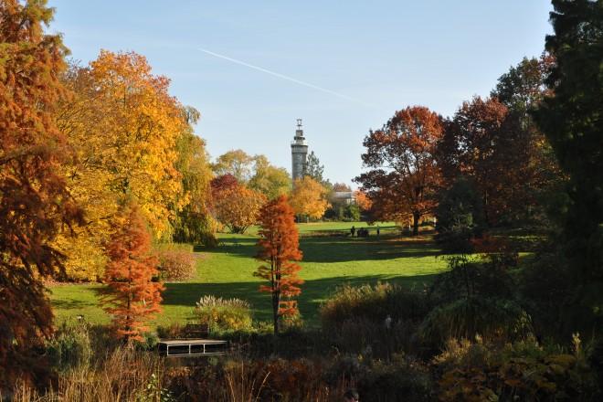 Waldsee und Grugaturm im Herbst