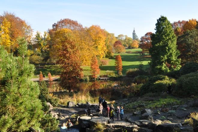 Alpinum und Waldtal im Herbst