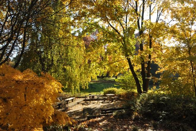 Schachplatz nahe der Dahlienarena