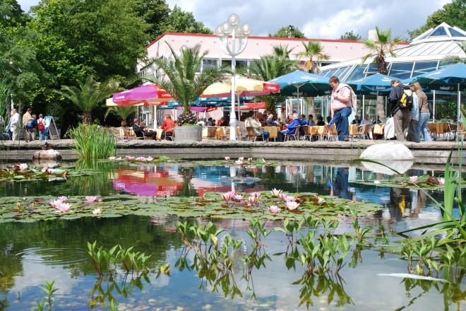Seerosenbecken und Gastronomie an der Orangerie