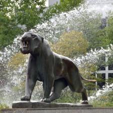 work of art: Tiger