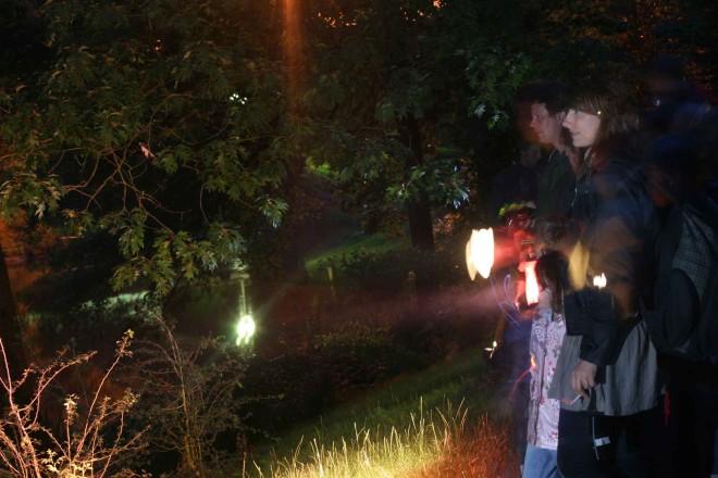 Fledermaus-Exkursion bei Nacht