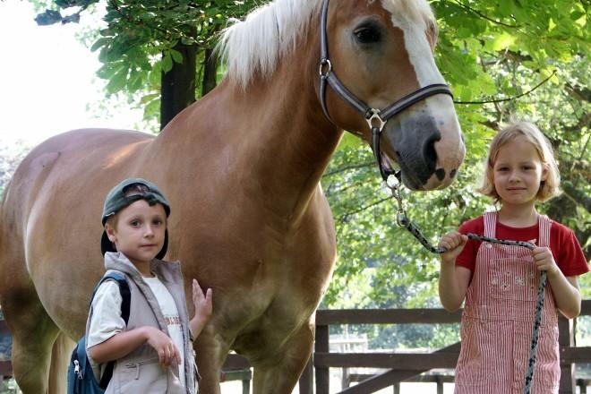 Ponyreiten im Grugapark