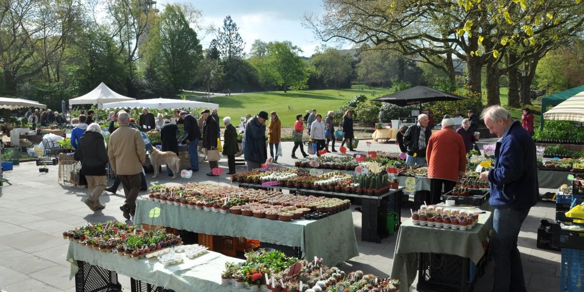 Pflanzenraritätenmarkt im Grugapark