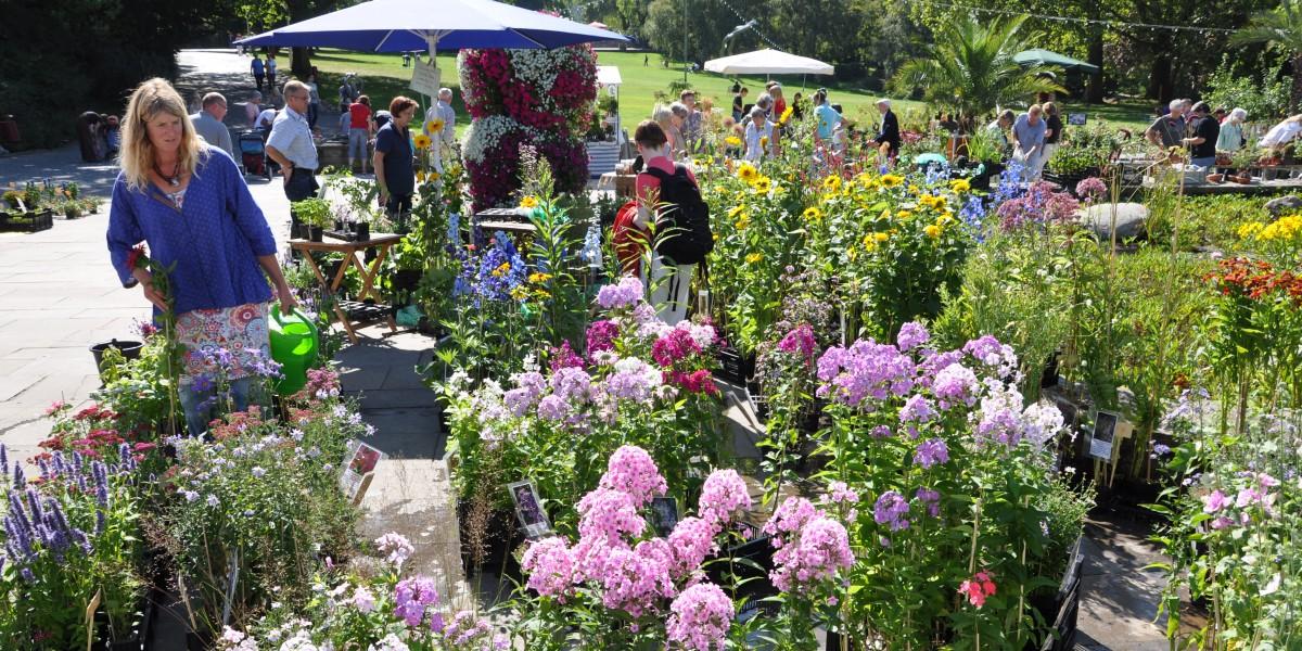 Beim Pflanzenraritätenmarkt im Grugapark